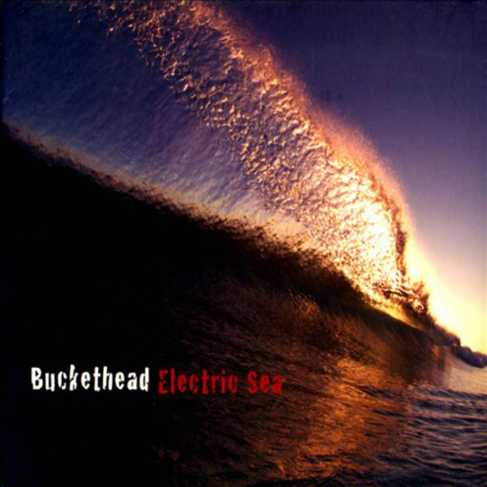 http://hasitleaked.com/wp-content/uploads/2012/01/Buckethead-Electric_Sea-Frontal.jpg
