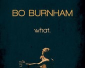 Bo Burnham : What.
