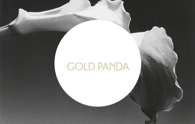 Gold Panda Good Luck