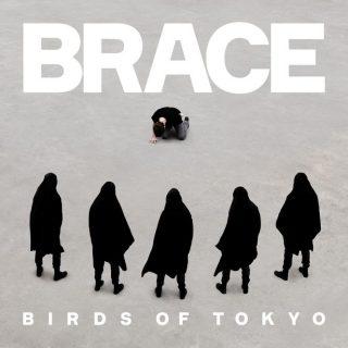 birdsoftokyo_brace-final-665x665