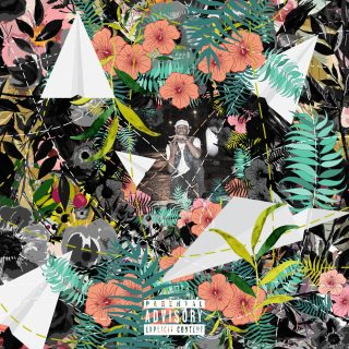 """News Added Nov 22, 2016 Flowers & Planes is the upcoming debut studio album from Taylor Gang rapper Tuki Carter. The project is due for release sometime in 2017 on Atlantic Records, Tuki's only retail release to date is a re-release of his """"Tuki"""" mixtape. Tuki is one of many artists whose name is being […]"""