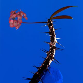 "News Added Feb 11, 2017 The prolific Australian EDM producer Flume has announced a new EP. It is the second installment of a set of EPs that contain material that didn't make Flume's 2016 album ""Skin"". The first EP came out back in 2016. Flume has shared 4 snippets of the EP songs as well. […]"
