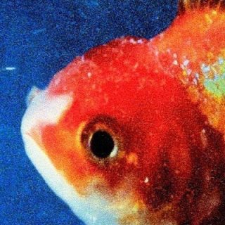 "News Added Mar 12, 2017 Long Beach rapper Vince Staples has been hinting for a few months new that he had an album dropping sometime in 2017. According to a recent article published in the latest VICE magazine, his sophomore album will be titled ""Big Fish Theory"" and is expected to be released by Def […]"