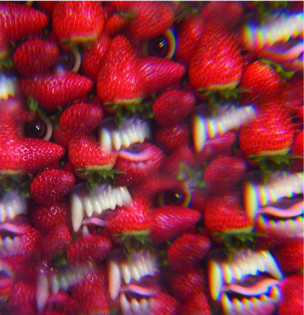 News Added Jan 29, 2013 On the heels of Putrifiers II, prolific Bay Area garage weirdos Thee Oh Sees have announced their next LP. Floating Coffin is out April 16 via John Dwyer's Castle Face Records. Submitted By Bret Track list: Added Jan 29, 2013 01 I Come From the Mountain 02 Toe Cutter – […]