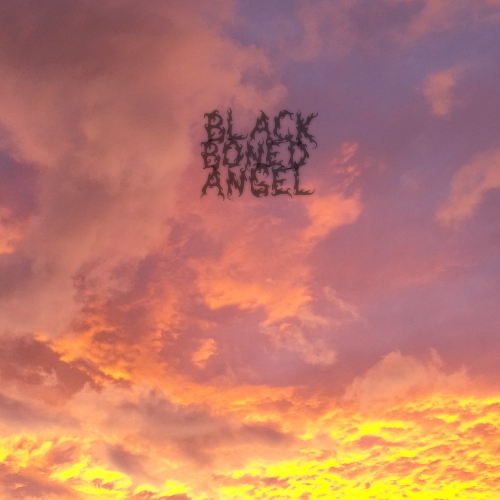 News Added Feb 11, 2013 New Zealand's drone doom metal duo Black Boned Angel are set to release their follow-up to 2010's The Witch Must Be Killed. The new offering, The End, scheduled for a February 19th release date on Handmade Bird Records, is a three-track affair that drones and dirges for over an hour. […]