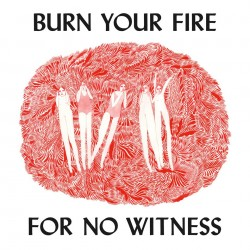 Angel Olsen : Burn Your Fire for No Witness