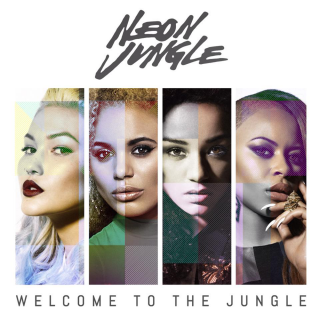 News Added May 29, 2014 'Welcome to the Jungle' is the upcoming debut studio album by British four-piece girl group Neon Jungle. It's scheduled to be released on digital retailers on July 28, 2014 via Sony Music and RCA Records. It comes preceded by the lead single 'Trouble', the smash top 10 singles 'Braveheart' and […]