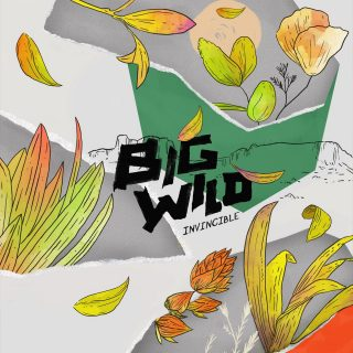 News Added Jan 28, 2017 On February 10th, 2017, Electronic producer Jackson Still (known by his stage name Big Wild) will be releasing his first Extended Play of original material. The 5-track project will be released by Foreign Family Collective and features collaborations with artists such as iDA HAWK and Yuna. Submitted By RTJ Source […]