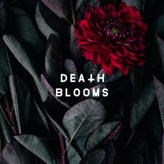"News Added May 11, 2017 Death Blooms is a Metalcore band that formed in 2016 consisting of members both from Liverpool and the Manchester area of the UK. The guys in Death Blooms will be releasing their debut EP, which is preceded by their debut single ""I'm Dead"", which you can watch below. The self […]"