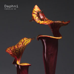 "News Added May 24, 2017 Dan Snaith, best known for his Caribou project, has announced a new album/mix of unreleased tracks under his side project Daphni. It is called ""fabriclive 93"" and was inspired by Dan's frequent visits to the Fabric club in London. Daphni's last album was 2012's ""Jiaolong"" and Caribou's last LP was […]"