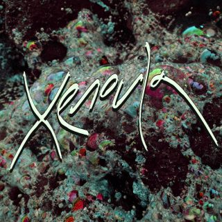 News Added Nov 21, 2017 Xenoula is Romy Xeno. Romy spent her early years in South Africa where she was influenced by the elemental songs of nearby villagers and the (tranquil) rhythms of nature. Here she developed an introspective affinity with flora and fauna rather than with man and machines. When Romy moved to the […]