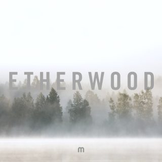 "News Added Jan 02, 2018 Third album from the British producer Edward ""Woody"" Allen (Artist name: Etherwood). Working under the label of Med School and Hospital Records. This is the follow up to the 2013 album ""Etherwood"" and 2015 album ""Blue Leaves"". For this album, Etherwood has found inspiration in the Finnish wilderness. Submitted By […]"