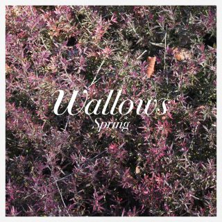 News Added Apr 06, 2018 Wallows is an alternative-rock band from Los Angeles comprised of childhood friends Dylan Minnette, Braeden Lemasters, and Cole Preston. Although the band members have been playing together for over 10 years, the group released their first music as Wallows in 2017 resulting in a string of sell-out shows, some great […]