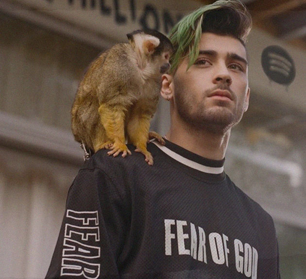 Fear of God worn by Zayn Malik