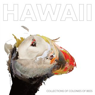 News Added May 17, 2018 Collections of Colonies of Bees emerged in 1998 as a new project from Chris Rosenau and Jon Mueller. Over the next two decades, Rosenau would remain the band's one constant member—the anchor of Bees' unmistakable music. Today, Bees consists of Ben Derickson, Chris Rosenau, Daniel Spack, Matt Skemp, and Marielle […]