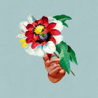 """News Added Aug 09, 2018 Chris Davids and Liam Ivory announced a second album from their deep house duo Maribou State. """"Kingdoms in Colour"""" will be released on 7 September via Counter Records. The tracklist is featuring 10 songs. The first single, Feel Good, is featuring popular indie/world music band Khruangbin. Submitted By Mavoy Source […]"""