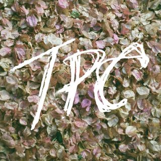"News Added Oct 03, 2018 Tokyo Police Club is an indie rock band from Newmarket, Ontario, Canada. They write on their site: ""TPC is our fourth studio album (sixth if you count our EPs, which we do). We wrote it at a beautiful old church in rural Ontario. We'd spend all day drinking coffee and […]"