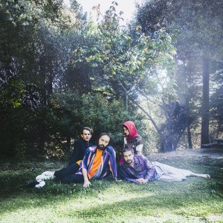 News Added Mar 03, 2019 After a two-year stretch that saw them break out with a pair of releases — 2016's Masterpiece and 2017's Capacity — the members of Big Thief put in some time on solo projects. Primary singer-songwriter Adrianne Lenker released abysskiss back in the fall, while guitarist/backup singer Buck Meek dropped his […]