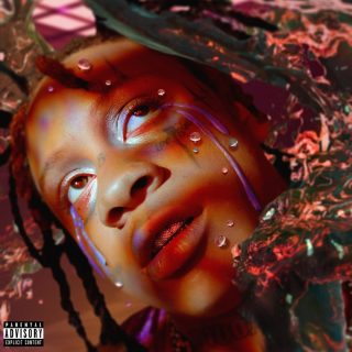News Added Nov 18, 2019 A Love Letter To You 4 (ALLTY4) is Trippie Redd's fourth installement in the A Love Letter to You series, and it is set to be released on November 22, 2019. On November 12, the tracklist for the album was released, and soon after the cover art would release also. […]