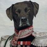 Profile picture of Beto
