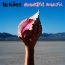 The Killers : Wonderful, Wonderful